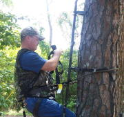 treestand safety