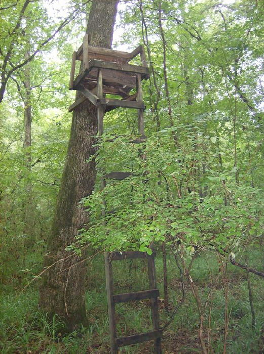 Ladder Stand Designs : Hunting from a treestand and safety